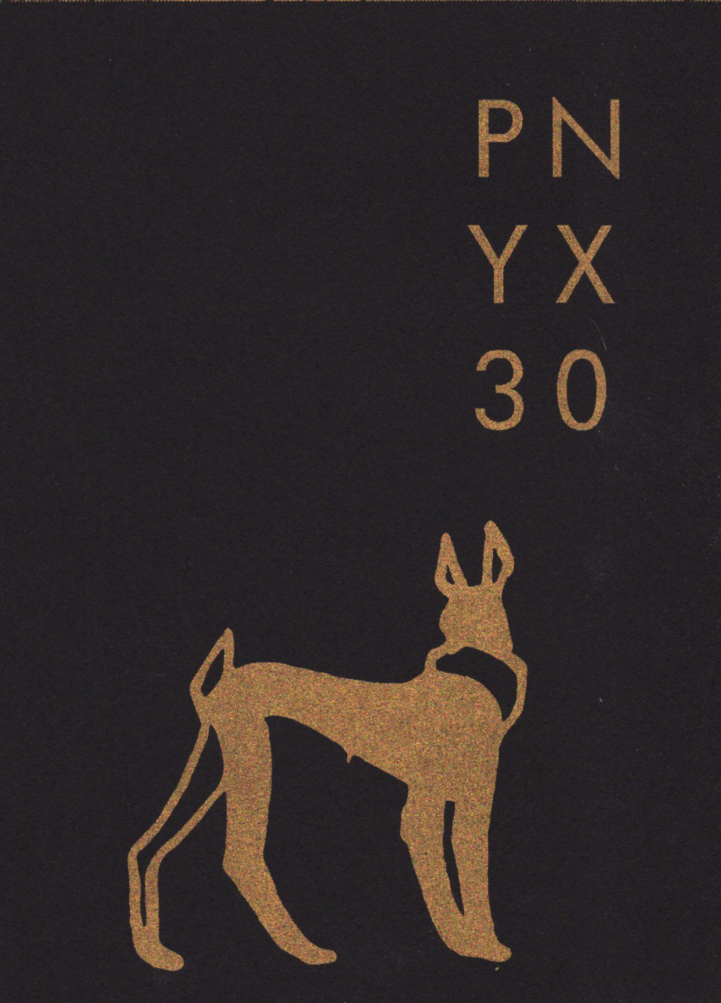 PNYX_30_front-pooch
